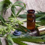 how to choose cbd oil