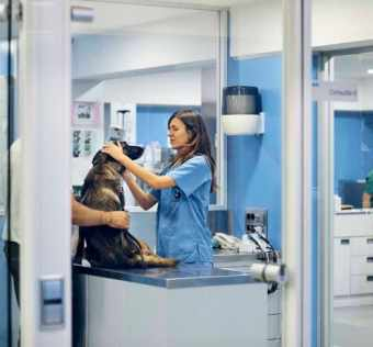 Significant benefits of Veterinary Relief Services